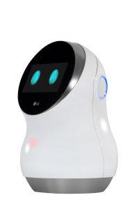 The LG Hub Robot